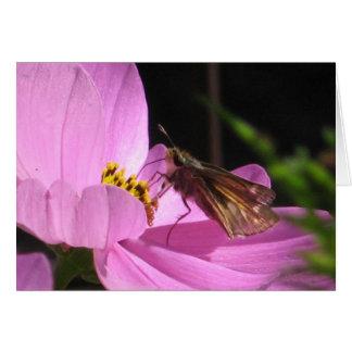 Butterfly Plain Card