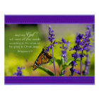 Butterfly, Purple flowers Poster