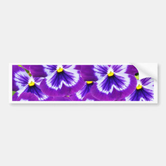 Butterfly_Purple_Pansies,_ Bumper Sticker