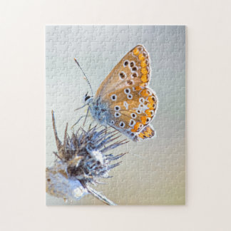 Butterfly putting on bluish pointed leaves jigsaw puzzle