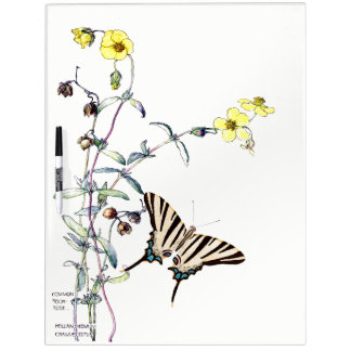 Butterfly Rock Rose Flowers Dry Erase Board