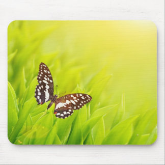 Butterfly sitting on a fresh green grass mouse pad