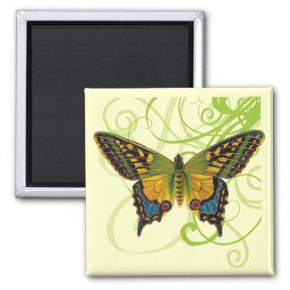 Butterfly Swirls Magnet