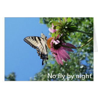 Butterfly (Tiger Swallowtail) Card