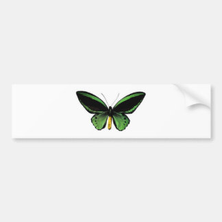 Butterfly unique design! bumper sticker