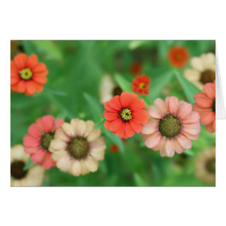 Butterfly View - Red Daisy Flowers Greeting Card