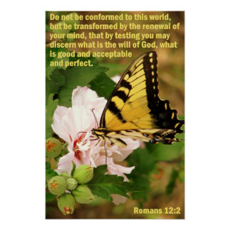 Butterfly with Romans 12:2 Poster