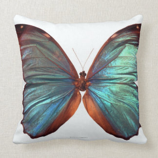 Butterfly with wings spread 2 throw pillow