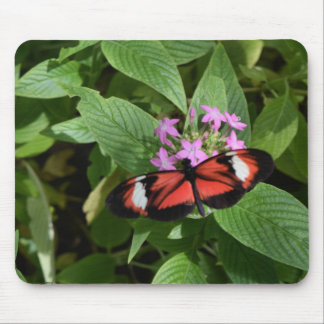 Butterfly World 2 Mouse Pad