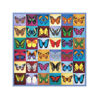 Butterfly World Canvas Print