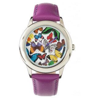 Butterfly World Watch