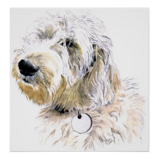 Butters the Labradoodle Print