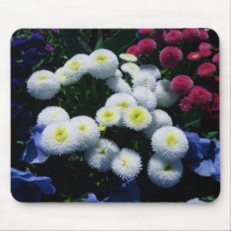 Button Chrysanthemums Mouse Pad