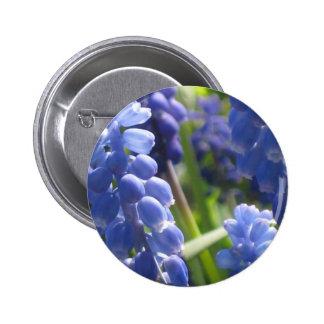 Button or Badge - Grape Hyacinth