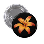 Button, Orange Spotted Lily.
