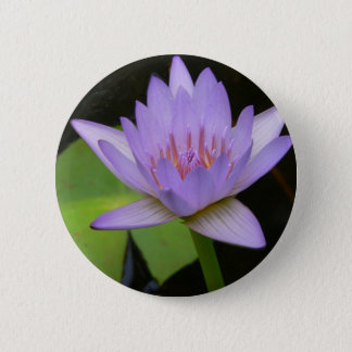 Button, Soft Lavender Water Lily  300 2 Inch Round Button