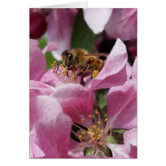 Buzy Bee Belated Birthday or Occation Card