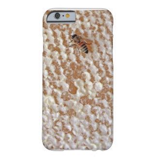 Buzz Honey Bee Phone Case