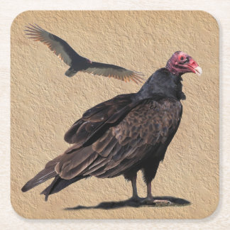BUZZARDS SQUARE PAPER COASTER
