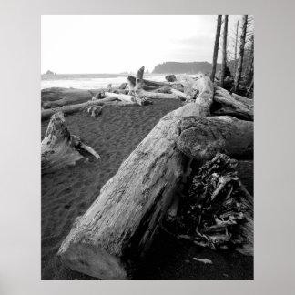 bw driftwood 2 poster