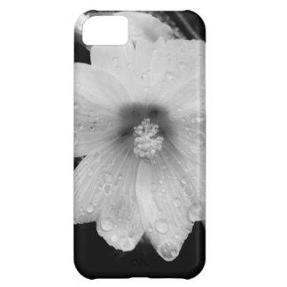 BW flower w/ raindrops iPhone 5C Cases