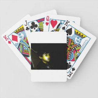 By the Campfire Bicycle Playing Cards