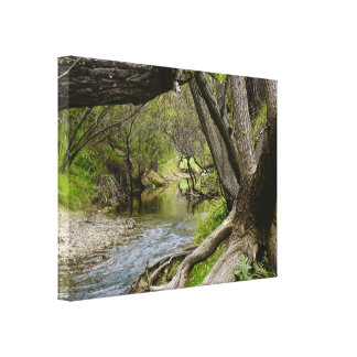 By The Creek Canvas Print