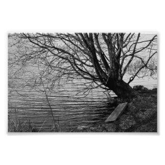 By the lake photo print