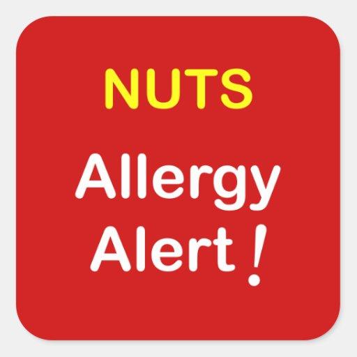 c1 - Allergy Alert - NUTS. Square Sticker