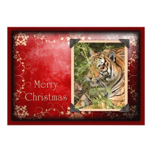 c-2011-tiger-027 bristols personnalisés