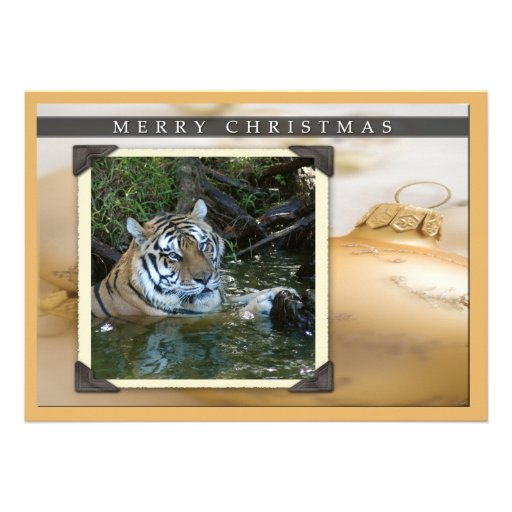 c-2011-tiger-061 cartons d'invitation
