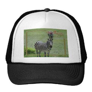 c-2011-zebra-007 trucker hat