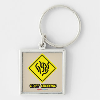 C. Diff Crossing Sign Keychain