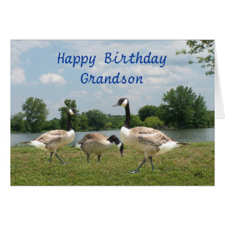 C. Geese-customize any occasion Card