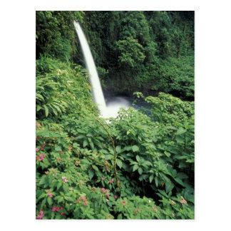 CA, Costa Rica. La Paz waterfall and impatients Postcard