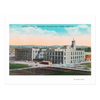CA Raisin Association Packing Plant Postcard