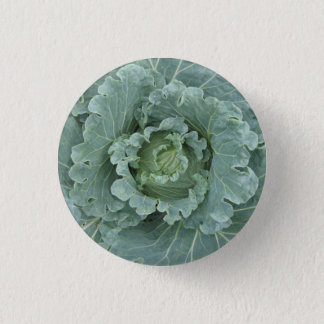 Cabbage from above , Green Leaves 1 Inch Round Button