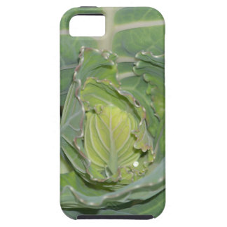 Cabbage Leaves iPhone 5 Covers