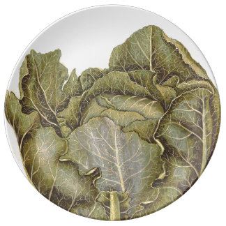 Cabbage Plate