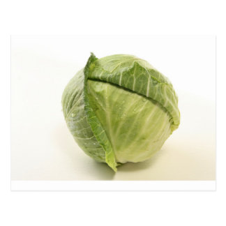 cabbage postcard