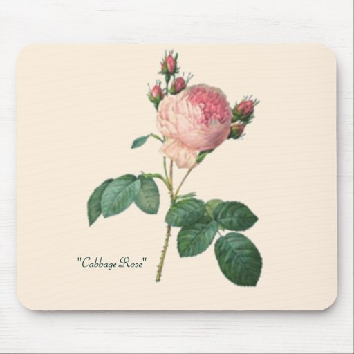"""Cabbage Rose"" Mouse Pad"