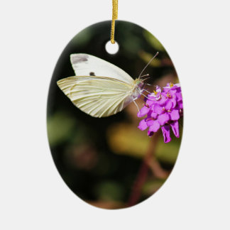 Cabbage White Butterfly Ceramic Oval Ornament