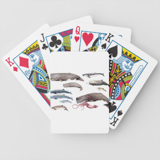 Cachalote and zifios: Whales of the depths Bicycle Playing Cards