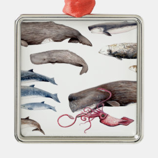 Cachalote and zifios: Whales of the depths Metal Ornament