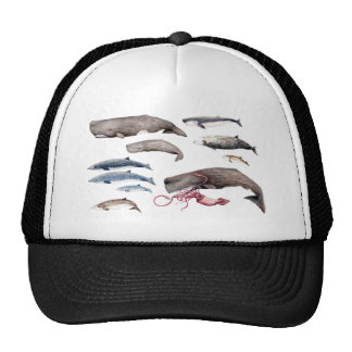 Cachalote and zifios: Whales of the depths Trucker Hat