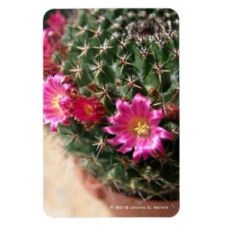 Cacti flowers rectangular photo magnet