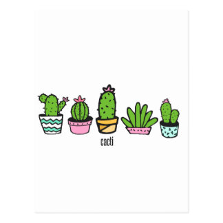 cacti grouping postcard