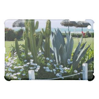 Cacti in Mexico iPad Mini Case