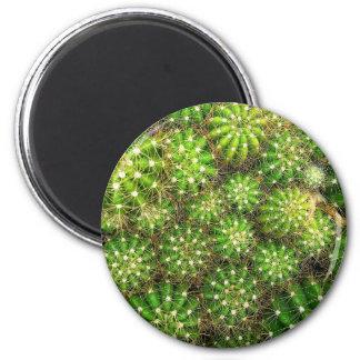 Cacti Round Magnet