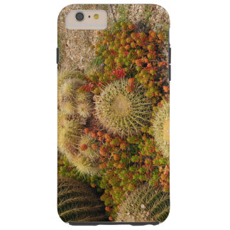 Cacti Tough iPhone 6 Plus Case